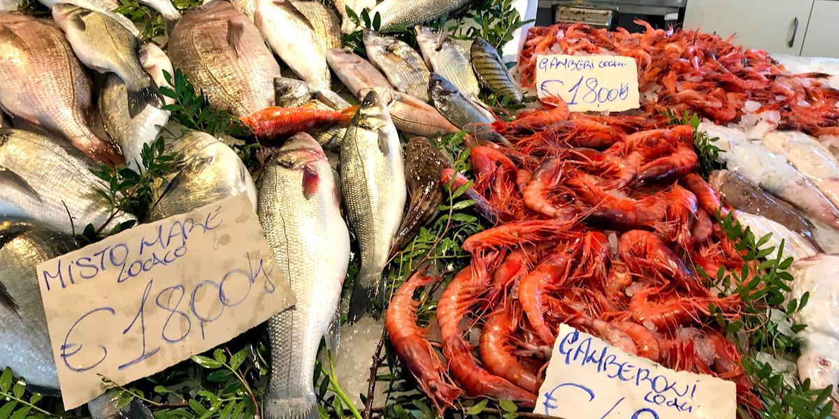Il pesce pescato a Porto Cesareo